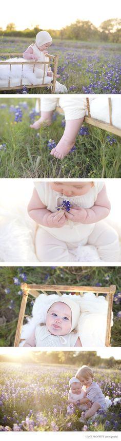 Bluebonnet baby session  | Dallas- Fort Worth Baby Photographer | Copyright Lane Proffitt Photography Toddler Photography, Newborn Baby Photography, Newborn Photos, Toddler Portraits, Baby Portraits, Foto Baby, Baby Photographer, Baby Milestones, Photographing Babies