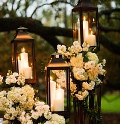 Flowers & Lanterns