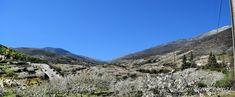 """Cerezo en Flor ""   🍒 Valle del Jerte 🍒        Sentir y vivir el valle de la primavera.   Cerezo en Flor   Valle del Jerte   Ext..."