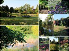 De Vier Handen in Vlagtwedde. Een grote landschapstuin met veel verschillende boomsoorten, grassen en natuurvijver.