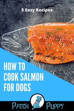 Is cooking salmon for dogs different than cooking for people? Learn how to cook salmon for dogs with these 5 easy recipes including this Salmon and Rice Dog Food Recipe. Salmon Recipes, Rice Recipes, Easy Recipes, Easy Meals, Diy Dog Treats, Dog Treat Recipes, Dog Food Recipes, Salmon And Rice, Crazy Dog Lady