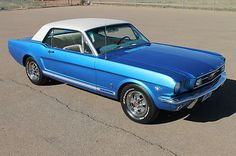 Ford : Mustang GT 1966 Ford Mustang GT - http://www.legendaryfinds.com/ford-mustang-gt-1966-ford-mustang-gt-2/