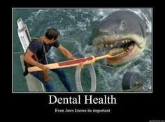Dental Health. Even Jaws knows it's important.