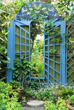 Garden mirror feature with blue painted surround with 'Green man' themed painting at top Small Courtyard Gardens, Small Courtyards, Back Gardens, Organic Gardening, Gardening Blogs, Buxus Sempervirens, Garden Mirrors, Green Man, Garden Gates