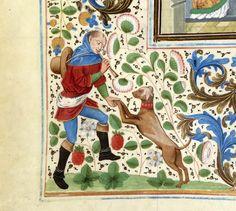 Un cane di ballerino. Miniatura tratta dalle 'Croniques' di Jean Froissart (Francia, XV secolo), Bibliothèque nationale de France, Parigi.