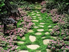 This design ideas are excellent for creating beautiful garden paths that agree with your landscape. Almost all of these examples are simple to create and would work nicely in nearly any garden design. I'm speaking about garden paths. Ground Cover Flowers, Ground Cover Plants, Landscape Design, Garden Design, Path Design, Landscape Plans, Fence Design, Design Web, Abstract Landscape