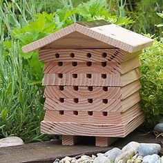 Solitary Bee Hive | Mason Bees, Pollination | UncommonGoods