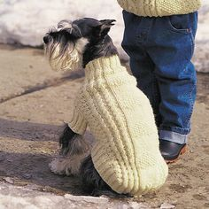 Yarnspirations is the spot to find countless free intermediate knit patterns, including the Red Heart Stylish Knit Dog Sweater. Browse our large free collection of patterns & get crafting today! Knitted Dog Sweater Pattern, Dog Coat Pattern, Knit Dog Sweater, Cat Sweaters, Knitted Coat, Knitting Patterns For Dogs, Dog Clothes Patterns, Free Knitting, Knit Patterns