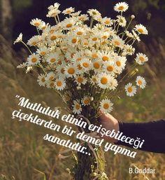 Dandelion, Flowers, Plants, Motivation, Dandelions, Flora, Plant, Royal Icing Flowers, Daily Motivation