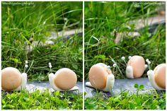 Makronky - šneci  Macarons - snails