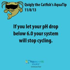 If you let your pH drop below 6.0 your system will stop cycling #aquaponics #cycling
