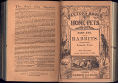 Beeton's book of Home Pets. 1861. The British Library copy is at shelf mark 7295b16 Issued in 26 parts, each 3d.