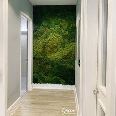 Moss Wall Art, Moss Art, Bg Design, House Design, Moss Decor, Succulent Wall Art, Vertical Garden Wall, Moss Garden, Art Mural
