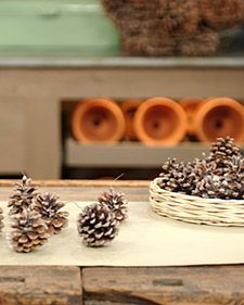 Pinecone fire starters using wax and epsom salt.  I like the way they look and Martha says they sparkle when you put them in the fire