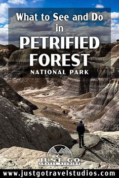 Our blog will help you plan your vacation to Petrified Forest National Park.  This great park in Arizona is amazing-don't miss it! American National Parks, National Parks Usa, Mexico Vacation, Mexico Travel, Petrified Forest National Park, Arizona Travel, Beaches In The World, Just Go, Places To Travel