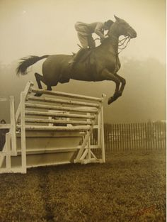 jumping horse. Been there, done that, BUT, now that I am getting older, I don't think I will be doing this again!!!! :)