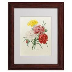 Equally at home as part of an artful collage or on its own as an eye-catching focal point, this lovely framed print features a floral motif for garden-chic style.  Product: Framed printConstruction Material: Wood, glass and paperColor: Brown frameFeatures:  Ready to hangReproduction of original artwork by Pierre-Joseph Redoute