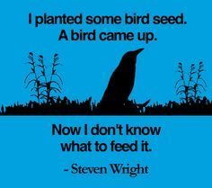 Steven Wright makes us lol :) Great Quotes, Funny Quotes, Funny Memes, Life Quotes, Far Side Cartoons, Steven Wright, Comedian Quotes, Laughter The Best Medicine, Make Em Laugh