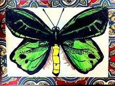 Room 9: Art!: Insect Lesson #2: Symmetrical Wings! Wonderful observational drawings. Love the mounting on wallpaper scraps!