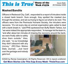 The Story of the Week for the 1,376th edition of the ThisIsTrue.com newsletter (basic subscriptions free since 1994!)