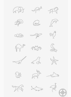 Line Drawing Tattoos, Line Tattoos, Body Art Tattoos, Small Tattoos, Tatoos, Amazing Drawings, Easy Drawings, One Line Animals, Animal Line Drawings