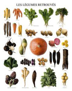 Vegetables of Yesteryears- Vergeten groenten -  Kunstdruk