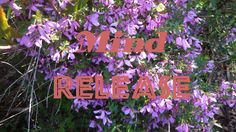 *Mind RELEASE: Subliminal Affirmations for Healing, PEACE, Insomnia, Isochronic Tones, Binaural Beats - for CALM Space© Healing PLAY=>