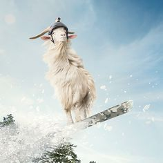 TomTom 'Goat' by Fedde Souverein