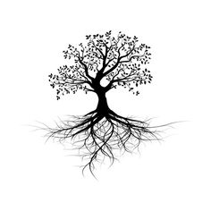 Old Black Tree With Roots Art Print by Olivier Le Moal at Art.com