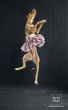 Dance when you are happy.