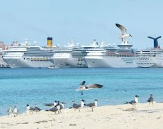 We will be in Nassau on January 27 and have a fun group going on a cruise in January 2014. Cabins available. Why not join us. Comment on www.facebook.com/... and I'll forward you info.