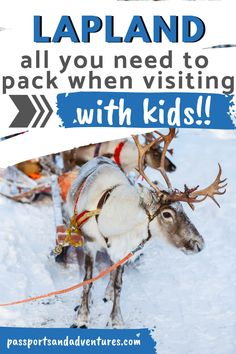Wondering what you should wear for your visit to Santa in Lapland? This helpful guide tells you what to pack for Lapland with kids and what clothing mistakes you should avoid! With information on the layering system this is the ONLY Lapland packing list you NEED! #passportsandadventures #laplandwithkids #Lapland #Finland #familytravel #familytraveltips #familytravelpackinglists #travel #packinglist #winter #clothing #europewithkids #finnishlapland #whattopack