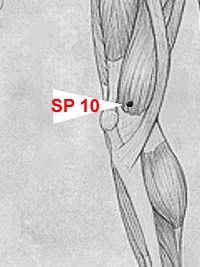 Spleen 10 Disney Characters, Fictional Characters, Abdominal Pain, Crunches, Lower Belly, Traditional Chinese Medicine, Arthritis, Flower, Tone It Up