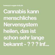 Cannabis kann menschliches Nervensystem heilen, das ist schon sehr lange bekannt - ☼ ✿ ☺ Informationen und Inspirationen für ein Bewusstes, Veganes und (F)rohes Leben ☺ ✿ ☼