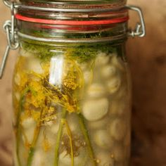 Letnia kiszonka wielowarzywna | Smaczna Pyza Pickles, Cucumber, Mason Jars, Bob, Bob Cuts, Mason Jar, Pickle, Bob Sleigh, Zucchini