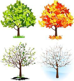 Дерево мечты место для начала