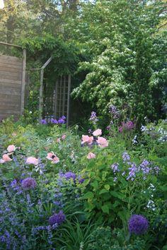 Gå trädgårdskurs i blommande april! (via Bloglovin.com )