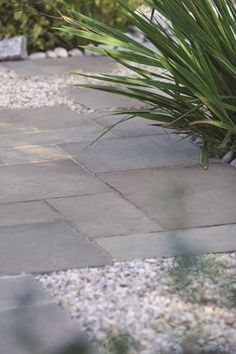 With a stunning overall visual effect, with beautiful colour and veining variations Bradstone Smooth Natural Sandstone Paving in Silver Grey provides a tasteful, refined and elegant garden backdrop. Sandstone Paving Slabs, Grey Paving, Paving Stone Patio, Outdoor Paving, Patio Slabs, Concrete Paving, Gravel Patio, Paving Stones, Outdoor Gardens