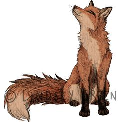 Fox Illustration A4 Print on 270gsm Card by LyndseyGreen on Etsy