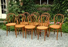 thonet chairs natural finish