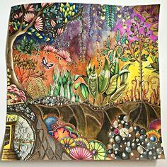 Johanna Bashford enhanted forest made by me