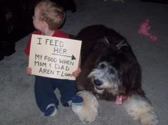 Pet and Dog Shaming - Join The Fun & Shame Your Pet