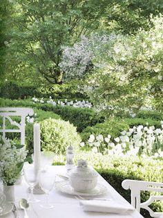 lush green / white garden