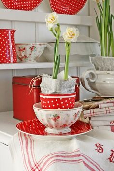 Red and white dishes