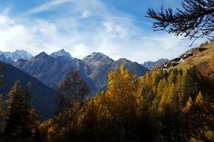 Our hotel, surrounded by beautiful Autumn colours ans offering stunning views on the Mont Blanc range