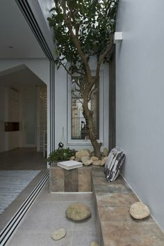 Dachterrasse eines asiatischen Hauses mit Baum und Sitzbank in Steinoptik