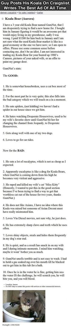 Guy Posts A Koala On Craigslist Writes The Best Ad Of All Time funny jokes story lol funny quote funny quotes funny sayings joke humor omg wtf stories