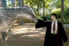 What Would Be Your Best Subject At Hogwarts?  Care of magical creatures
