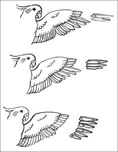 You can give your cockatiel varying amounts of flight capability depending on the amount of feathers you clip on her wings. With cockatiel chicks who haven't mastered flying, it's a good idea to gradually clip their wings. Cockatiels who learn to fly, land, and use their bodies to move about a cage are surer of …