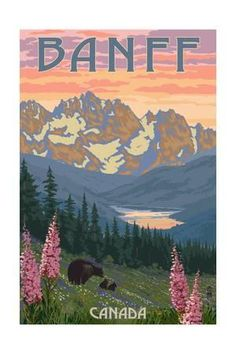 Banff, Canada - Bear and Spring Flowers Prints by Lantern Press at AllPosters.com